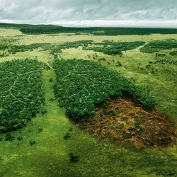 Analisi emissioni in atmosfera